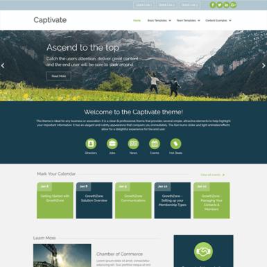 captivate web theme for associations