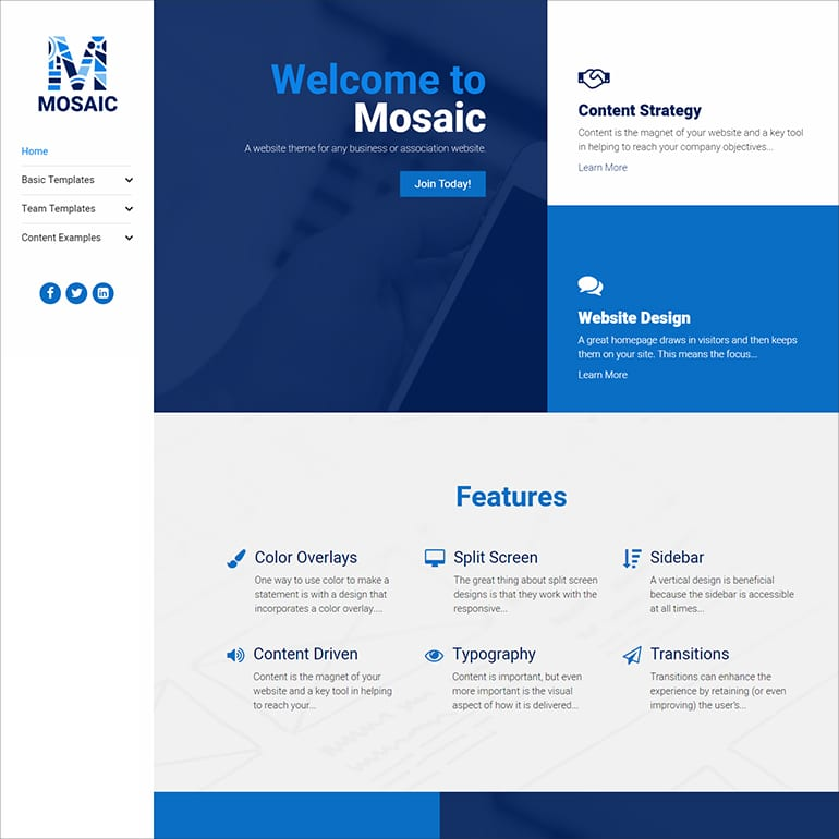 image of mosaic site homepage for association websites